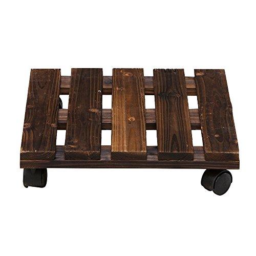 BLWX Bloemstandaard, afneembaar dienblad van massief hout, binnenframe van Bonsai met flessenrek, bescherming tegen corrosie