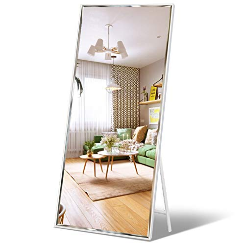 "Full Length Mirror 65""x23.6"