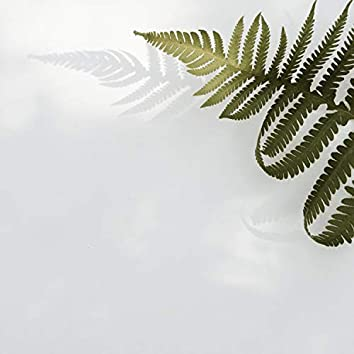 Sonidos Relajantes de la Naturaleza