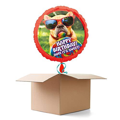 WOOOOZY Ballongrüsse Happy Birthday / Geburtstag / Herzlichen Glückwunsch Mops, 1 Ballon