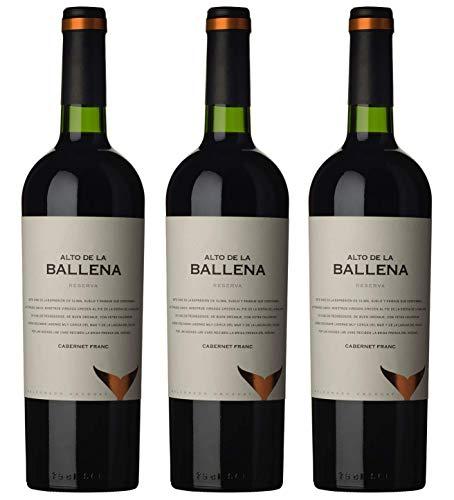 Atlantik Weine, Weinpaket Reserva Cabernet Franc 2009, Rotwein aus Uruguay, Südamerika, trocken (3 x 0,75l)
