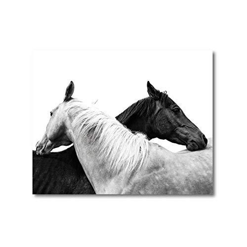 VVSUN Caballo Blanco Y Negro Foto PóSter Impresiones De Animales Remolque Caballo RúStico Granja Pared Arte Lienzo Pintura Cuadro Hogar Pared DecoracióN 60x80cm