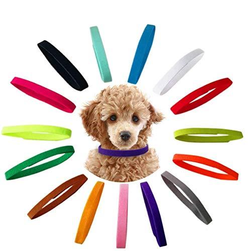 Jiahuade Welpenhalsbänder für züchter,Einstellbar welpenhalsband,Nylon Welpenhalsbänd,Welpenhalsband,Halsband Welpe Set,Hundemarke,Hund Katzen Halsbänder,15 Stück