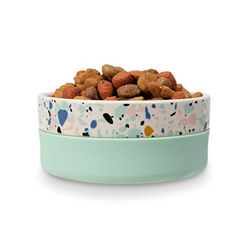 Best Stylish Dog Bowl