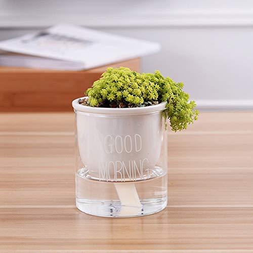Tritow 1 pc Automatique Arrosage Planteur Pot en Céramique Pot De Fleurs avec Verre Eau Conteneur pour Plantes Vertes Plante Succulente Cactus (Color : White Font, Taille : Low)