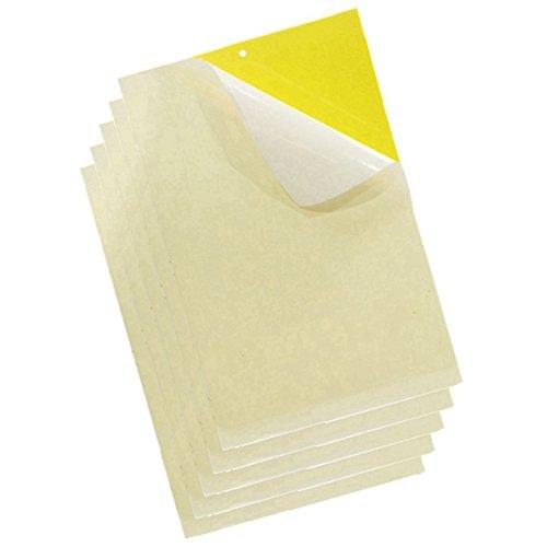 20PCAK jaunes pièges à insectes Pièges Collants Conseil pour Moustiques Pucerons Mineuses de mouches, les pucerons, mineur, mites et moisissures Moucherons pièges à mouche tiges de fixation FLY TRAP