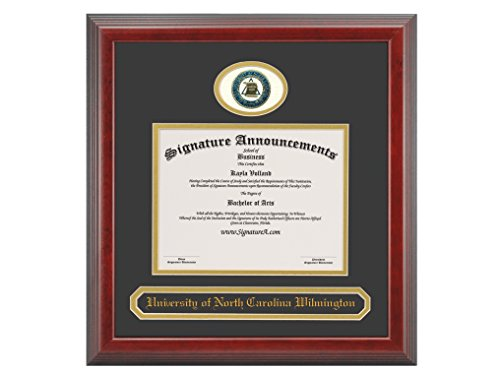 Name /& Tassel Graduation Diploma Frame Cherry 16 x 16 Signature Announcements University-of-Illinois Undergraduate Professional//Doctor Sculpted Foil Seal