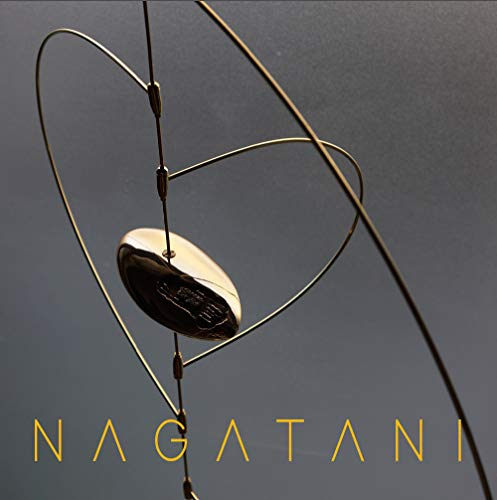 Kyoji Nagatani. Vibrazione spazio temporale. Catalogo della mostra. Ediz. illustrata