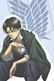 Notebook: Levi Ackerman Journal for Writing | Attack on Titan Wings of Freedom Notebook for Anime Lovers | 110 Blank Lined Pages (6' x 9') Gift for Kids Teens and Adults.
