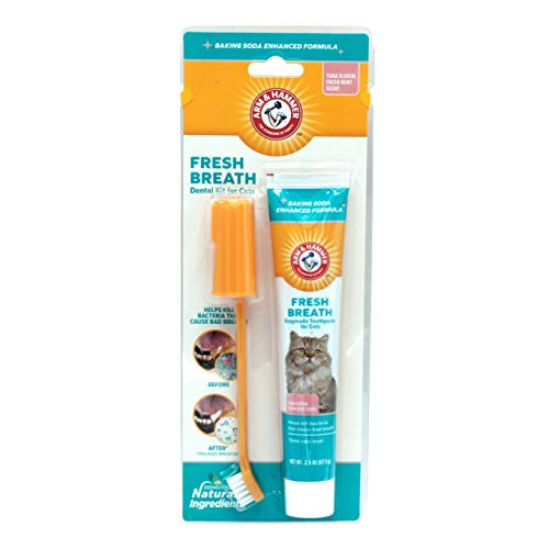 Arm & Hammer Cat Dental Care Dental Kit for Cats   Eliminates Bad Breath   3 Piece Set Includes Toothpaste, Toothbrush & Fingerbrush, Tuna Flavor