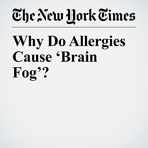 Why Do Allergies Cause 'Brain Fog'? copertina