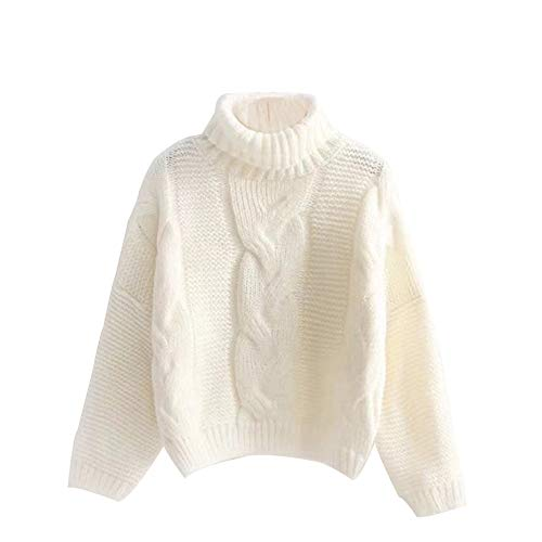 TEFIIR Damen Winter Kaschmir Langarm Rollkragen Pullover Kleid Gestrickter Sweater Kleid Herbst/Winter Winddichter Warmer Sweatershirt Lose Tops