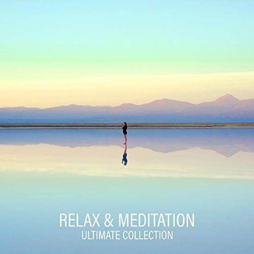 Mindfulness Meditation Music Spa Maestro & Meditation Music Zone