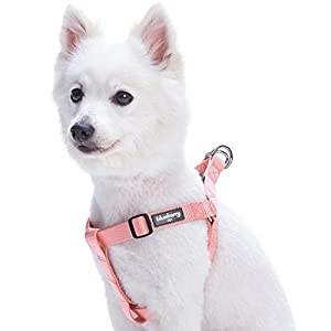 Blueberry Pet Essentials 20+ Colors Classic Solid Color Step-in Dog Harnesses/Harness Vests