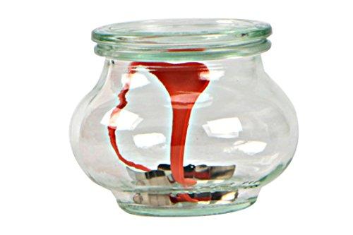 Weck Vasetto Decò 1 litro con Coperchio da 100 mm, Completi di Guarnizione e Clips, Scatola da 4 Pezzi, Vetro, Trasparente