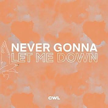 Never Gonna Let Me Down (feat. John Wilds & Larue Howard)