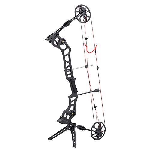 WGLG Compound Bogen, Verbindung Scheibe Bügelsäge Pfund Einstellbar Pfeil Und Bogen Bogenschießen Ausrüstung Athletische Unterhaltung Jagd Mit Pfeil Und Bogen