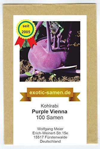 Kohlrabi - schnellwüchsig - für Sommer- und Herbsternte - Purple Vienna - 100 Samen