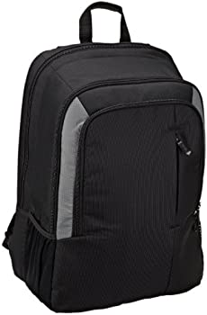 Amazon Basics Laptop Computer Backpack