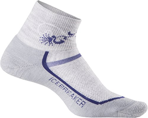 Icebreaker Damen Socken Strümpfe Multisport Light Mini, Blizzard Hthr/Horizon, S