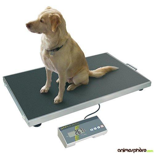 Balance vétérinaire plateau inox - KERN