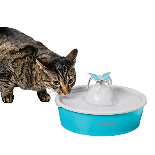PetSafe Butterfly Dog & Cat Water Fountain – Pet Drinking Fountain – Best for Cats & Small Dogs – 50 Oz Capacity