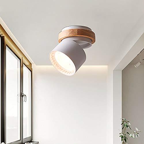 Protokolliert kleine Downlights LED-Lichter rotierende Garderobe Downlights kreativen Korridor Downlight Stahlwand lange Lebensdauer-grey