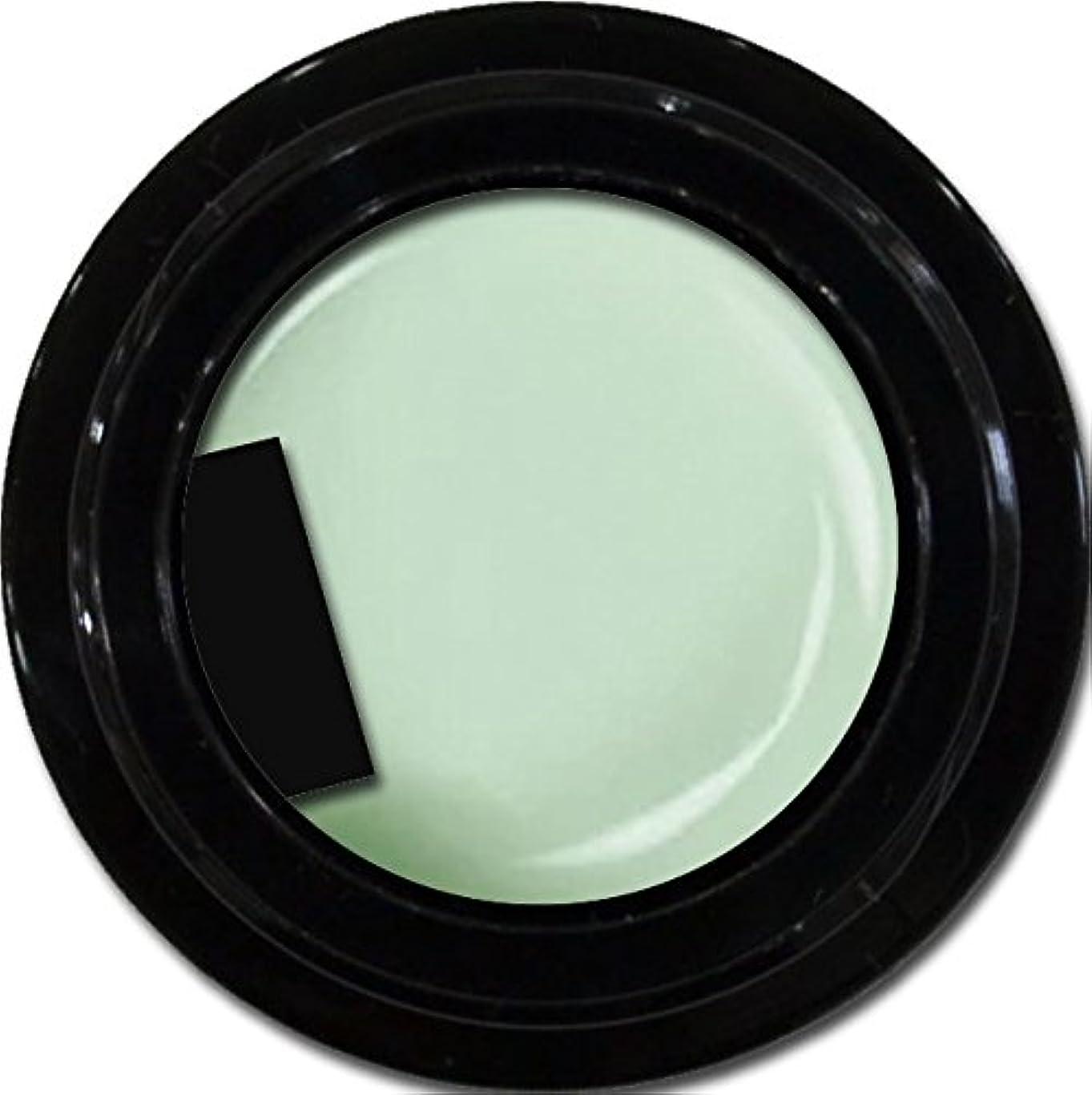 引っ張る側溝吹雪カラージェル enchant color gel M703 MintDesign 3g/ マットカラージェル M703 ミントデザイン 3グラム