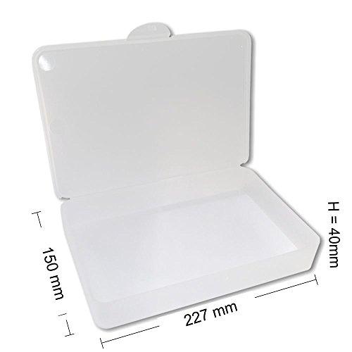 Feilenbox Arbeitsmaterial-Box Hygiene Utility- Box Kundenbox gross L-Case transparent 227x150x40 mm LxBxH