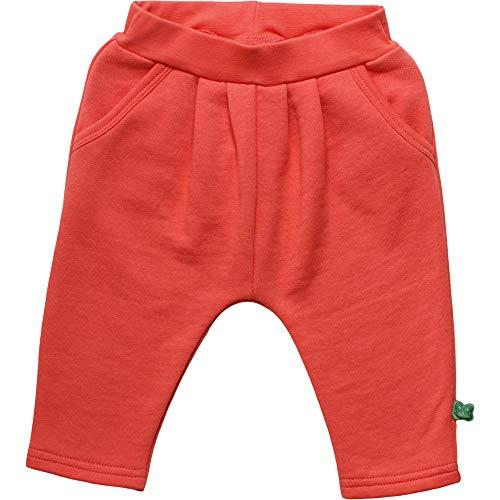 Fred'S World By Green Cotton Sweat Pants Pantalon, Orange (Warm Coral 018164901), 74 Bébé Fille