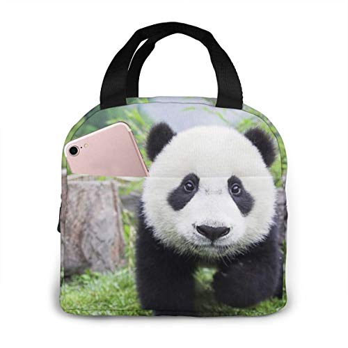 Insulated Cooler Lunch Bag, Panda Bear Lunch Tote Bag/Picnic Bags Lunchbox for Travel Office Work School