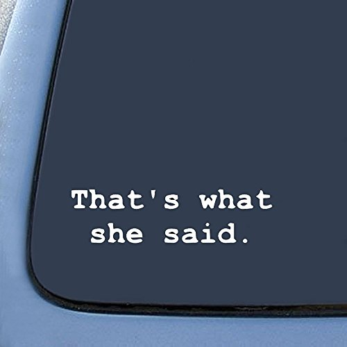 Bargain Max Decals - That's What She Said - Office Sticker Decal Notebook Car Laptop 8' (White)