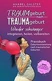 TRAUMgeburt nach TRAUMAgeburt: Wieder schwanger: integrieren, heilen, vorbereiten | Ein Praxisbuch zur Geburtsvorbereitung nach traumatischen Geburten
