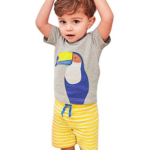 Vovotrade® 2PC Infantile Bébés Garçons Filles Infant Baby Boys Girls Fashion Mode Mignon Animal de Bande Tops Shirt Dessinée Chemise + Pantalon Tenues Ensemble Outfits Set (Gray-7760birds, 3T)