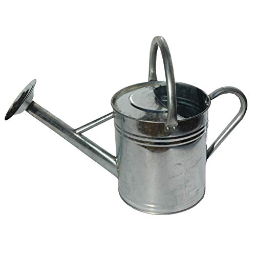 Gardener's Select AW3003P6G Watering Can, Galvanized, 3.5 L