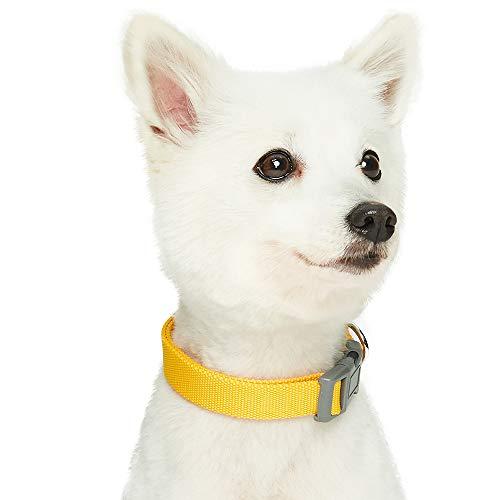 Umi. Essential Classic, Collare per Cani, L, Collo 45-66 cm, Regolabile, Colore Giallo Tinta Unita