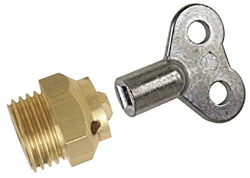 Boutt 1856236 C5+CLE4 - Purgador para radiador (05 x 10, llave de cuadradillo de 4 mm, niquelado)