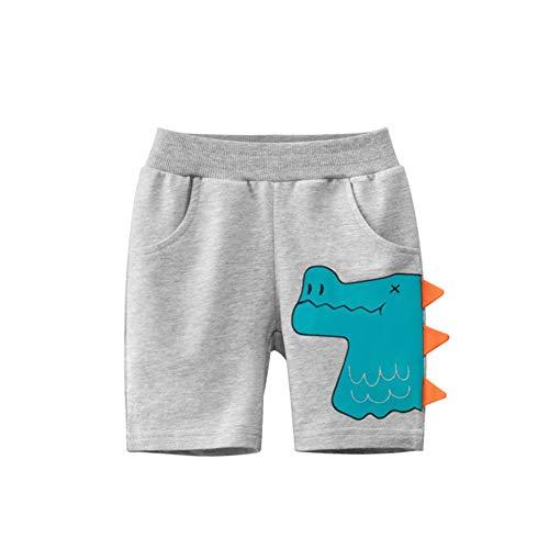 Qtinghua Baby Boy Shorts Casuales Pantalones Cortos de Dinosaurio creativos con Bolsillos para el Verano (Gray, 4-6 Years)