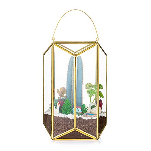 Tragbare Terrarium Glas Gold Ökosystem Im Glas Geometrisch Blumentopf Mini Gewächshaus Fur Bonsai Fleischfressende Pflanzen Led Kerze Dekoration Moder Übertopf Fur Sukkulenten Künstlich Moos Insekten