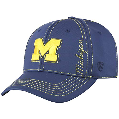 Top of the World Michigan Wolverines Offizielle NCAA One Fit Learning Curve Hat Cap 450810