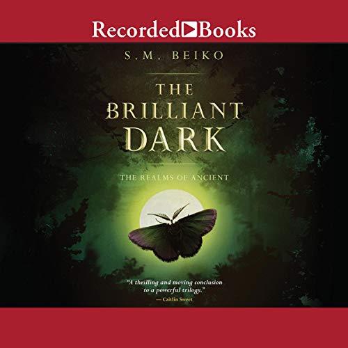 Page de couverture de The Brilliant Dark