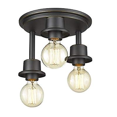 Emliviar 3-Light Flush Mount Ceiling Light - Industrial Ceiling Light in Black Finish, WE214F-3W BG