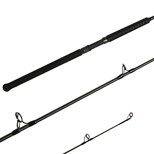 Shimano Teramar West Coast Spinning Saltwater|Inshore|Spinnng Fishing Rods, 1pc Power: Med HVY | Action: Ex Fast [TMSX80MHB], Length: 8'0'