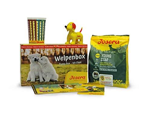 JOSERA Welpenbox mit YoungStar Welpenfutter, für mittlere und große Rassen, inklusive Messbecher, Welpenfibel und Quietsch-Spielzeug, Super Premium Trockenfutter für wachsende Hunde, 1er Pack