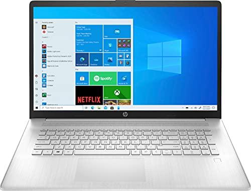 HP Pantalla táctil HD+ de 17,3 pulgadas, procesador AMD Ryzen 5 4500U 6 núcleos, 16 GB RAM, 1 TB SSD, 1 TB HDD, DVD-RW, cámara web, teclado retroiluminado, Windows 10 Home,W/9H cable HDMI