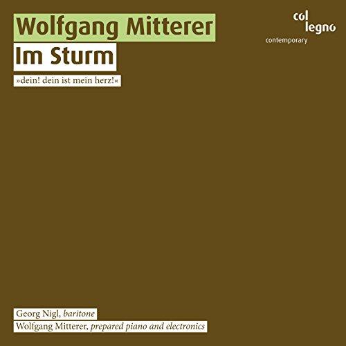 Im Sturm: Für präpariertes Klavier in zwei Schichten