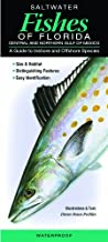 Saltwater Fishes of Florida-Central & Northern Gulf of Mexico: A Guide to Inshore & Offshore Species