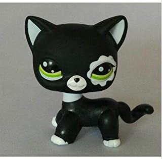 Littlest pet Shop LPS#2249 Figure Black Rare Short Hair Cat with Blue Eyes