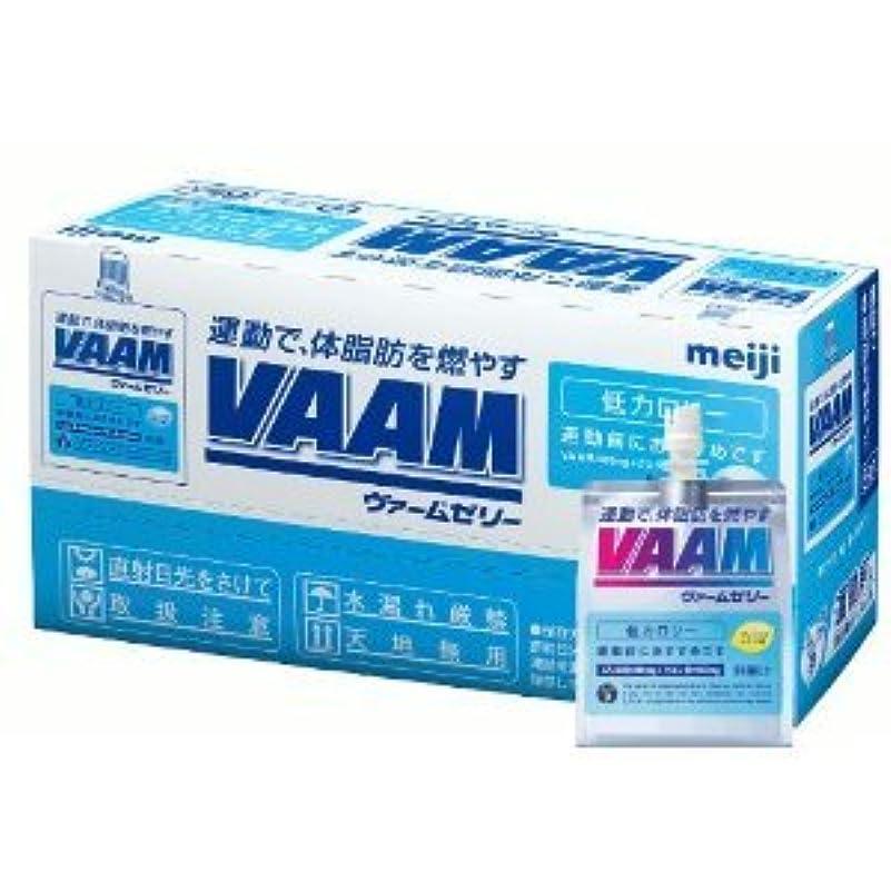 漏れ癒す質量明治 VAAM ヴァームゼリー190G【12個セット】