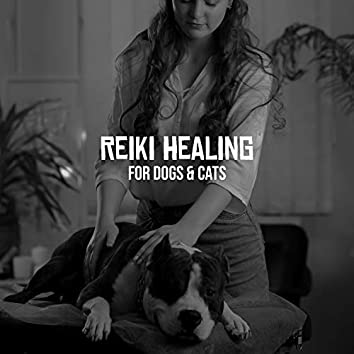 Reiki Healing for Dogs & Cats - Calming Music and Relaxing Sounds for Animals, Play, Spa & Sleep